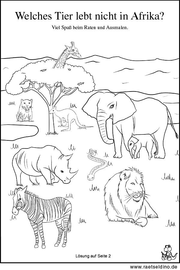 Tierrätsel zum Ausdrucken mit Lösung   Tiere in Afrika!